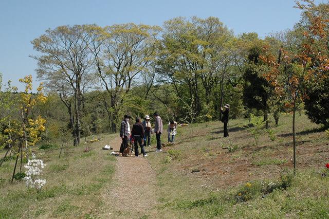 樹木葬墓苑の様子2