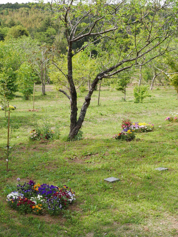 ペットの埋葬